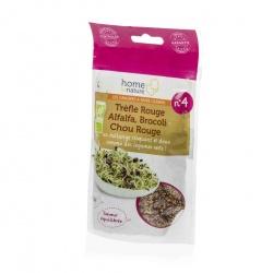Mélange de graines à germer Bio N4 trèfle rouge, alfalfa, brocoli, chou rouge