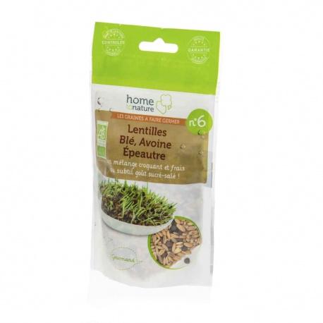 Mélange de graines a germer bio N6 lentilles, blé, avoine, épeautre