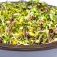 Germoir manuel + livret de recette offert