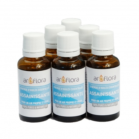 lot de 6 synergies 6x30 ml Assainissant